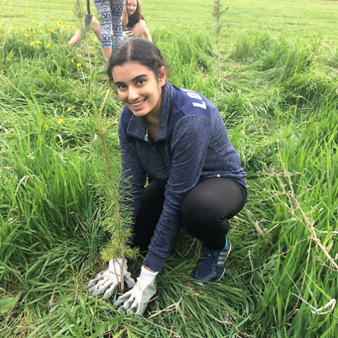 A Edmonton-based student plants a tree at her school to increase biodiversity