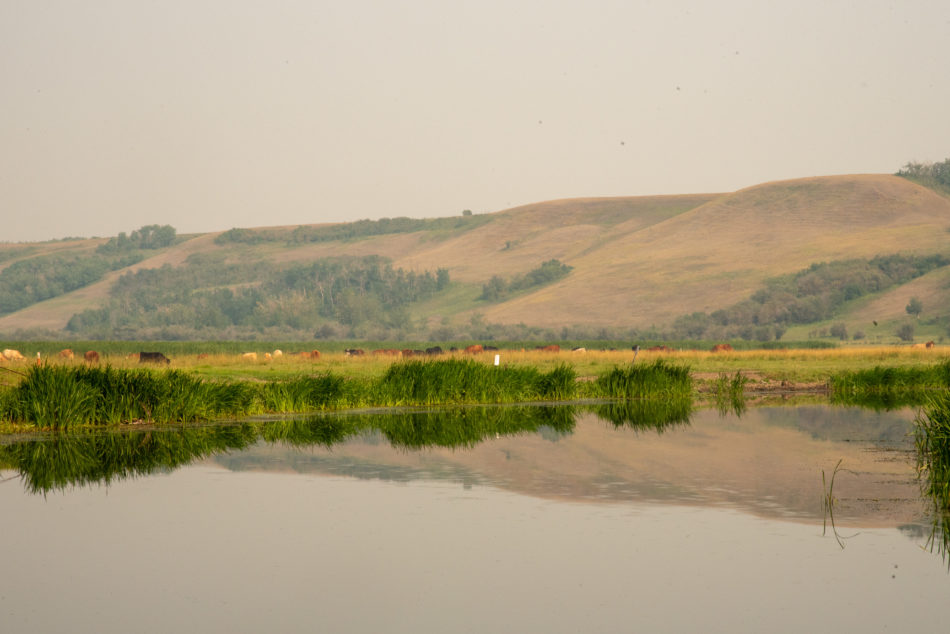 Dried Meat lake showing a reflection of the surrounding hills