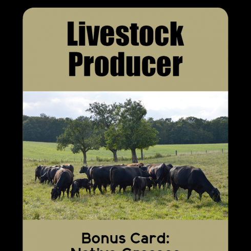 An card showing the example Livestock Producer stakeholder card