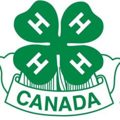 A 4-leaf clover logo with an H on each leaf