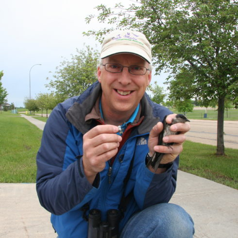 Glen holds a purple martin who has been banded.